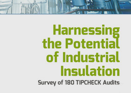 Harnessing the Potential of Industrial Insulation. Survey of 180 TIPCHECK Audits.